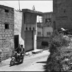 http://www.dyntera.com/files/gimgs/th-38_Syrian_XP_BW_012.jpg