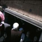 http://www.dyntera.com/files/gimgs/th-38_Syrian_XP_CL_086.jpg